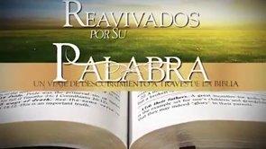 13 de mayo | Reavivados por su Palabra | 1 Timoteo 3