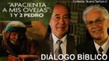 Resumen | Diálogo Bíblico | Lección 11 | Falsos maestros | Escuela Sabática