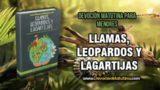 Miércoles 17 de Octubre 2018 | Lecturas devocionales para Menores | Diente de León