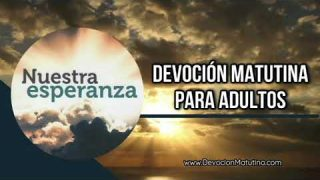 6 de enero 2019 | Devoción Matutina para Adultos | Un poco más