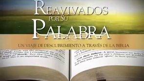 11 de mayo | Reavivados por su Palabra | 1 Timoteo 1