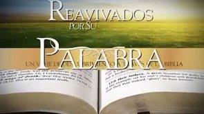 15 de mayo | Reavivados por su Palabra | 1 Timoteo 5
