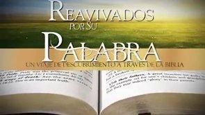 6 de mayo | Reavivados por su Palabra | 1 Tesalonicenses 4