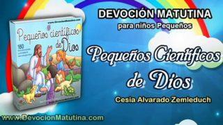 Domingo 18 de septiembre 2016 | Devoción Matutina para niños Pequeños 2016 | Sombras