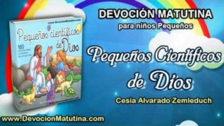 Martes 11 de octubre 2016 | Devoción Matutina para niños Pequeños 2016 | Un caballito marino