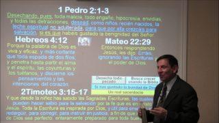 Lección 3   Un real sacerdocio   Escuela Sabática 2000