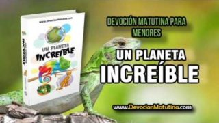Jueves 15 de febrero 2018 | Devoción Matutina para Menores | Defensas reptiles