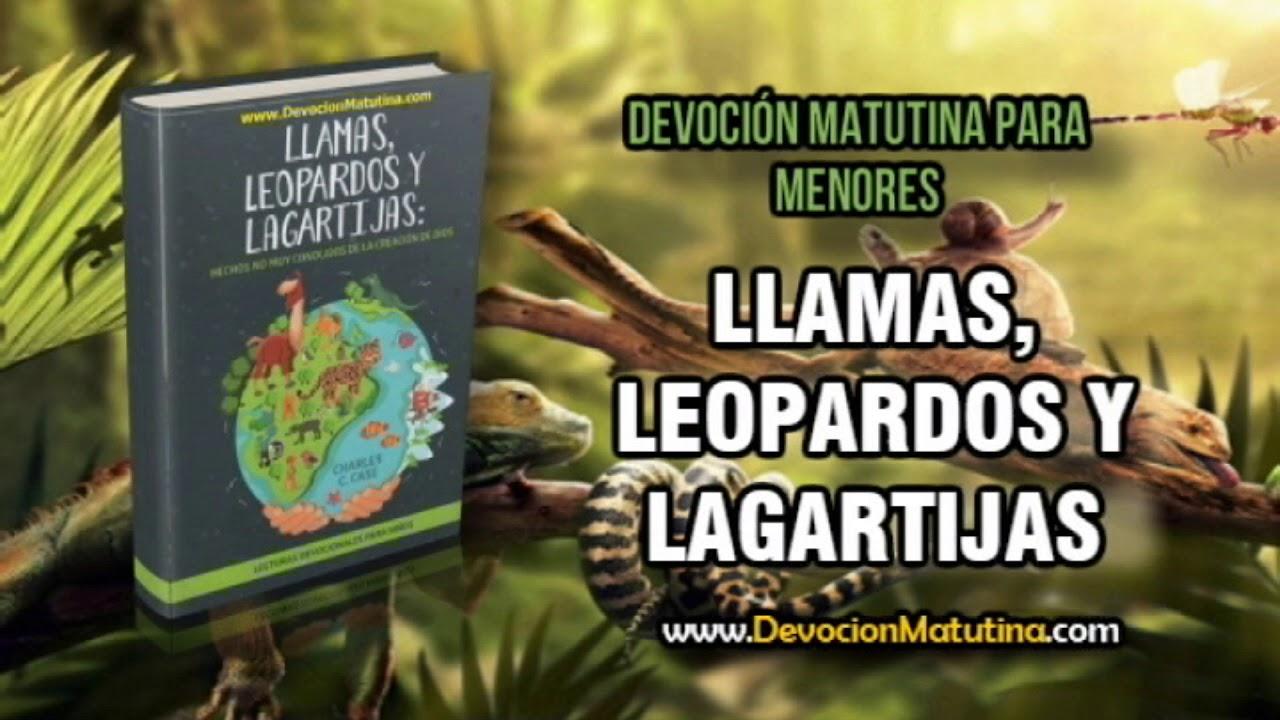 Domingo 1 de abril 2018 | Lecturas devocionales para Menores | Cachalotes