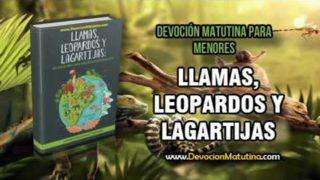 Lunes 27 de agosto 2018 | Lecturas devocionales para Menores | Búfalo cafre
