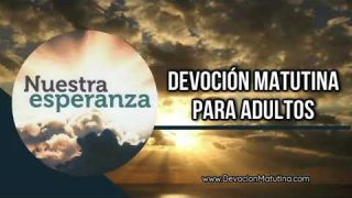 8 de enero 2019 | Devoción Matutina para Adultos | Confía en el Señor