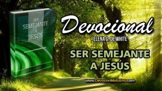 4 de noviembre | Devocional: Ser Semejante a Jesús  | El culto familiar diario rinde preciosos resultados