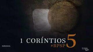 1 Corintios 5 | Resumen: Reavivados por su Palabra | Pr. Adolfo Suárez